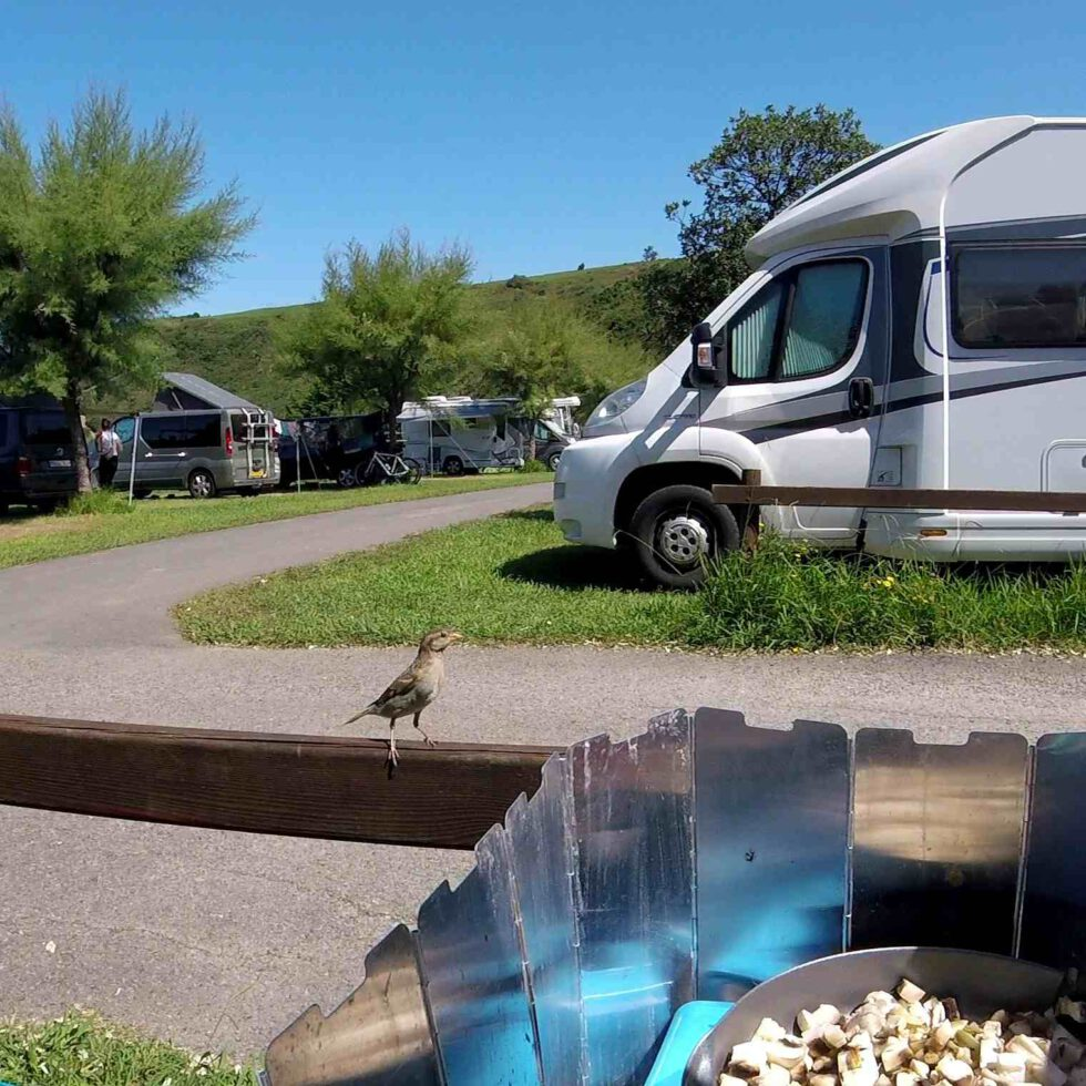 Ein Campingplatz mit Wohnmobilen im Hintergrund, im Vordergrund ein Campingkocher und ein Spatz auf dem Zaun